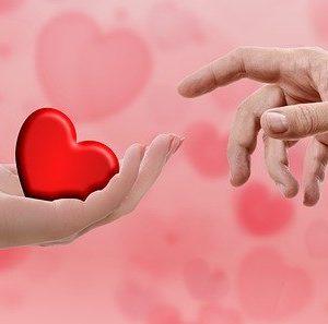 Vorgestellt: 5 Senses for Love